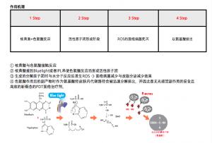 PDT光动力祛痘疗程作用机理